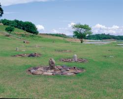 樺山遺跡 (国指定史跡)