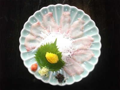 鯰(なまずの刺身)