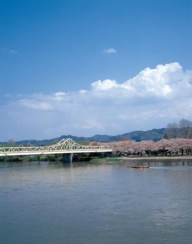 桜が咲く頃の珊瑚橋